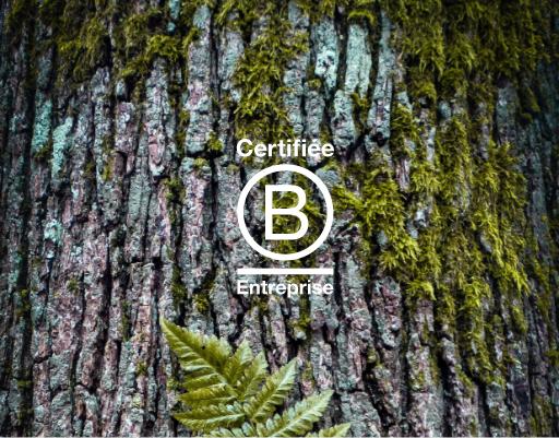 Nature & Découvertes • Certification B. Corp